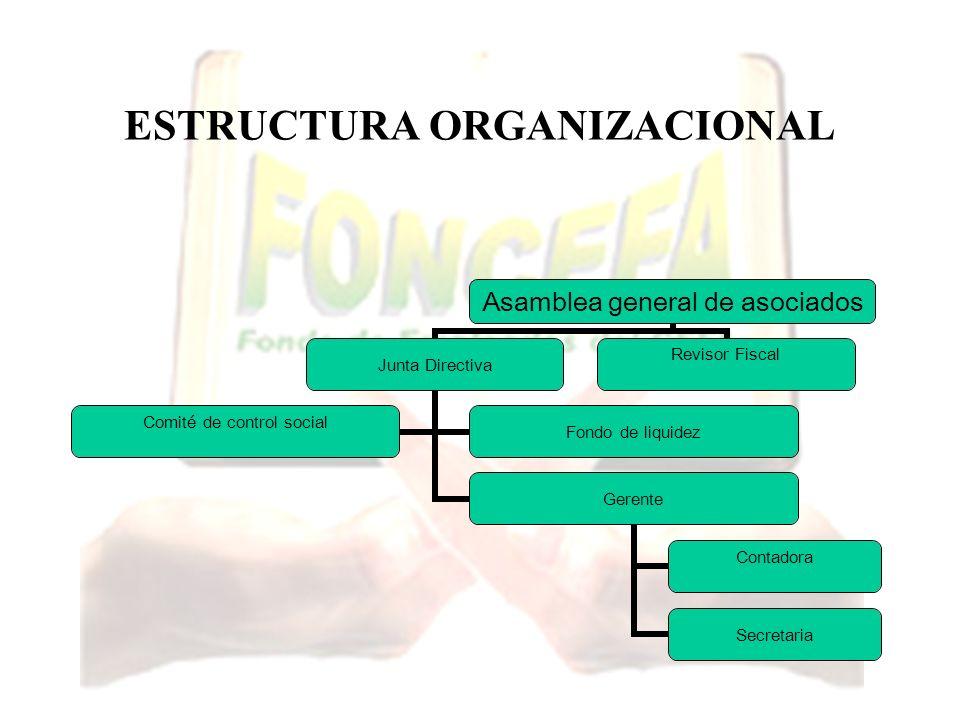 ESTRUCTURA ORGANIZACIONAL Asamblea general de asociados Junta Directiva Gerente Contadora Secretaria Comité de control social Fondo de liquidez Reviso