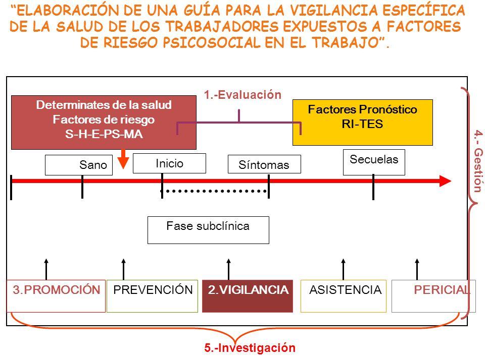 ELABORACIÓN DE UNA GUÍA PARA LA VIGILANCIA ESPECÍFICA DE LA SALUD DE LOS TRABAJADORES EXPUESTOS A FACTORES DE RIESGO PSICOSOCIAL EN EL TRABAJO. 3.PROM