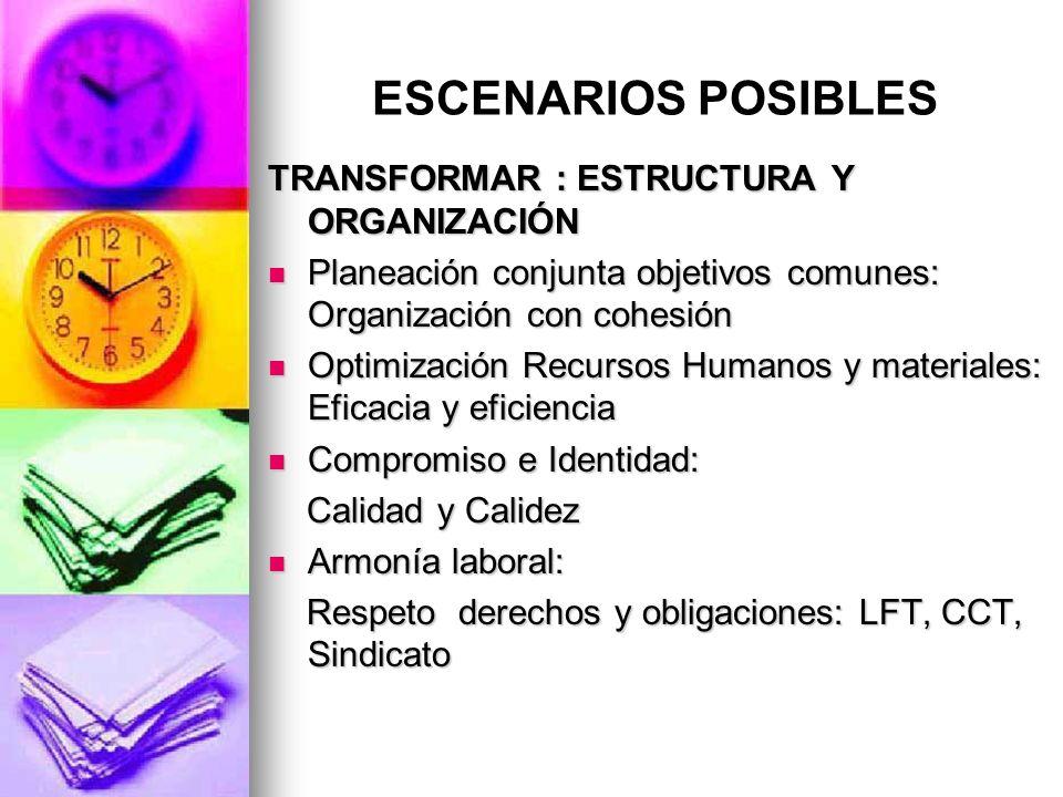 ESCENARIOS POSIBLES TRANSFORMAR : ESTRUCTURA Y ORGANIZACIÓN Planeación conjunta objetivos comunes: Organización con cohesión Planeación conjunta objet