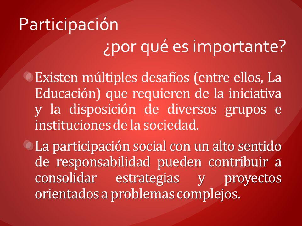 Participación ¿por qué es importante? Existen múltiples desafíos (entre ellos, La Educación) que requieren de la iniciativa y la disposición de divers