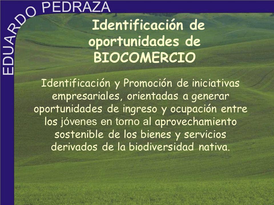Identificación de oportunidades de BIOCOMERCIO Identificación y Promoción de iniciativas empresariales, orientadas a generar oportunidades de ingreso