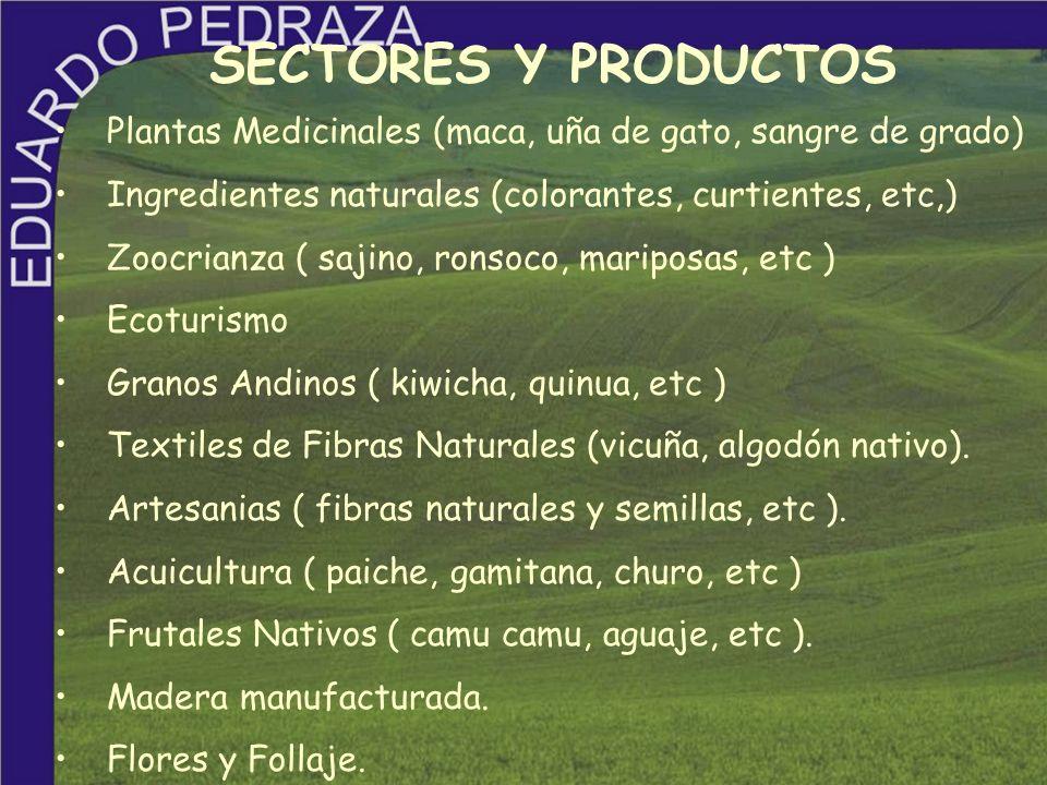 SECTORES Y PRODUCTOS Plantas Medicinales (maca, uña de gato, sangre de grado) Ingredientes naturales (colorantes, curtientes, etc,) Zoocrianza ( sajin