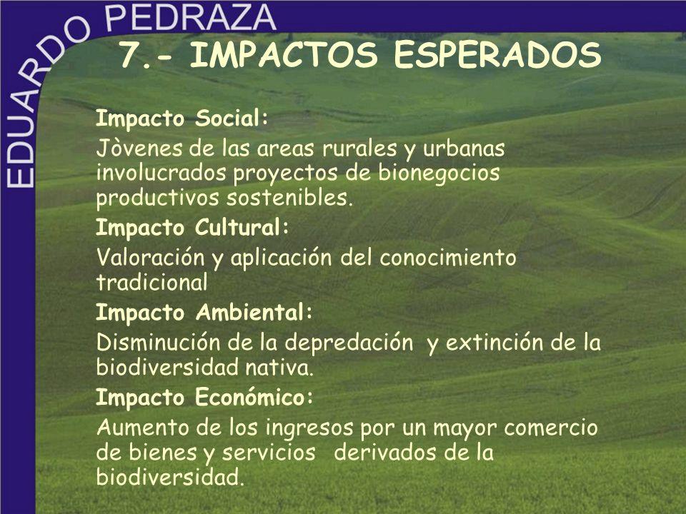 Impacto Social: Jòvenes de las areas rurales y urbanas involucrados proyectos de bionegocios productivos sostenibles. Impacto Cultural: Valoración y a