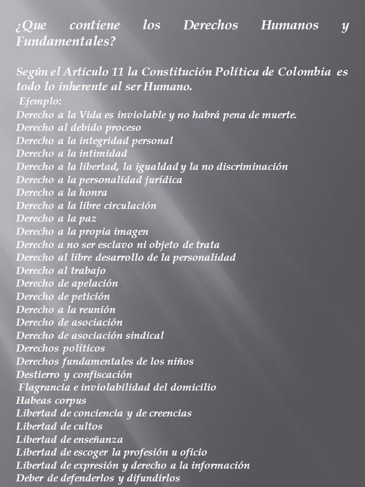 ¿ Que contiene los Derechos Humanos y Fundamentales? Según el Artículo 11 la Constitución Política de Colombia es todo lo inherente al ser Humano. Eje