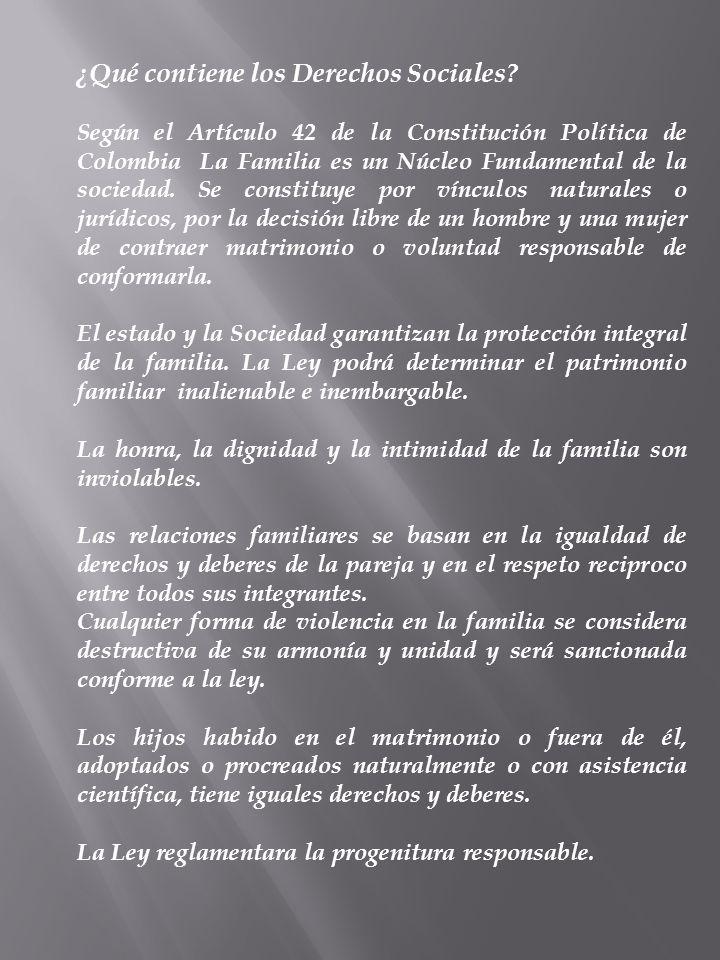 ¿Qué contiene los Derechos Sociales? Según el Artículo 42 de la Constitución Política de Colombia La Familia es un Núcleo Fundamental de la sociedad.