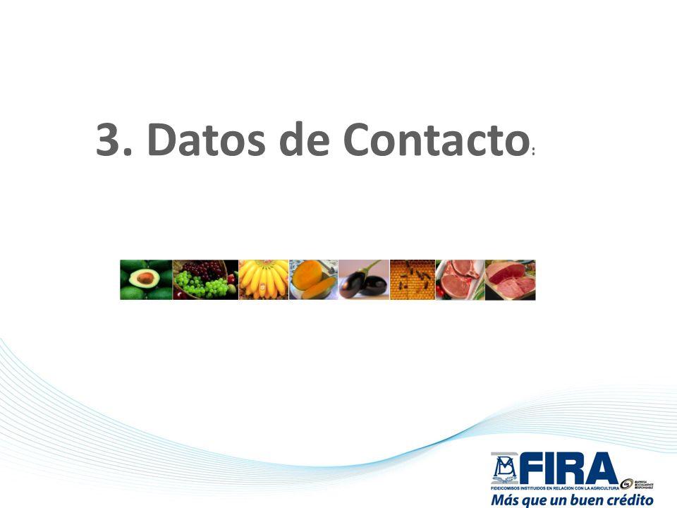 3. Datos de Contacto :