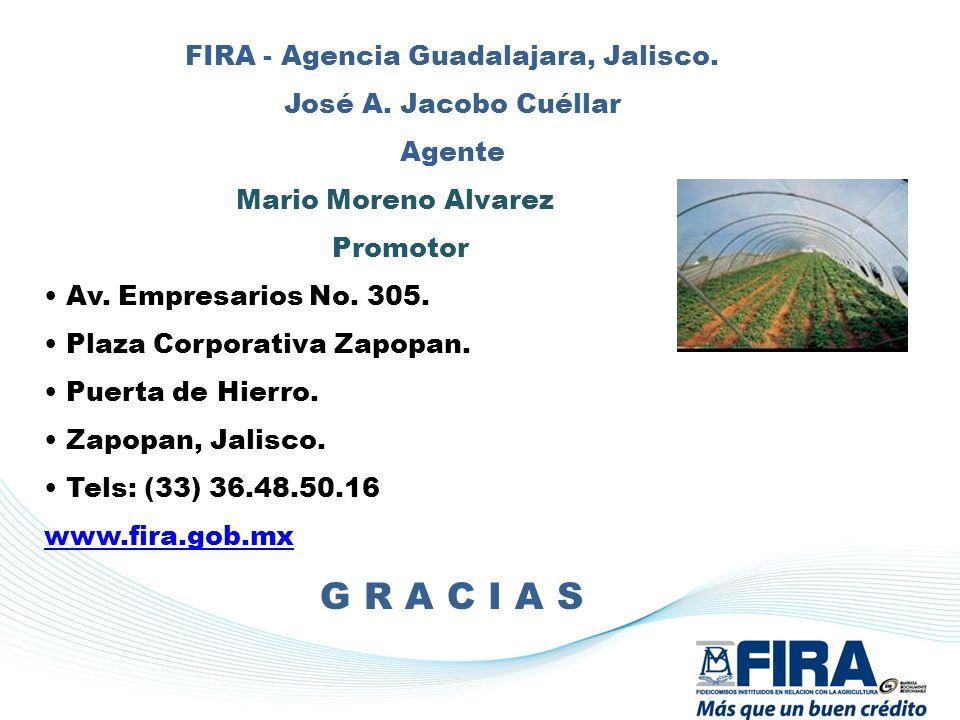 FIRA - Agencia Guadalajara, Jalisco. José A. Jacobo Cuéllar Agente Mario Moreno Alvarez Promotor Av. Empresarios No. 305. Plaza Corporativa Zapopan. P