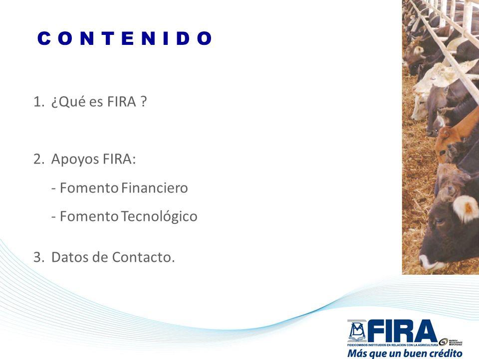 C O N T E N I D O 1.¿Qué es FIRA ? 2.Apoyos FIRA: - Fomento Financiero - Fomento Tecnológico 3.Datos de Contacto.