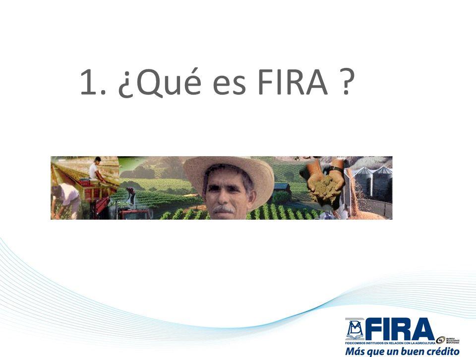 Fideicomisos Instituidos en Relación con la Agricultura FIRA es un conjunto de fideicomisos constituidos por el Gobierno Federal con el fin de otorgar crédito, garantías, capacitación, asistencia técnica y transferencia de tecnología al sector rural.