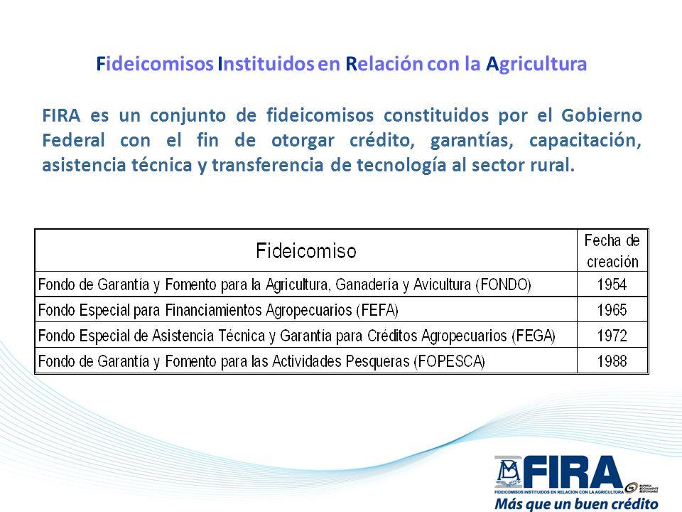 Fideicomisos Instituidos en Relación con la Agricultura FIRA es un conjunto de fideicomisos constituidos por el Gobierno Federal con el fin de otorgar