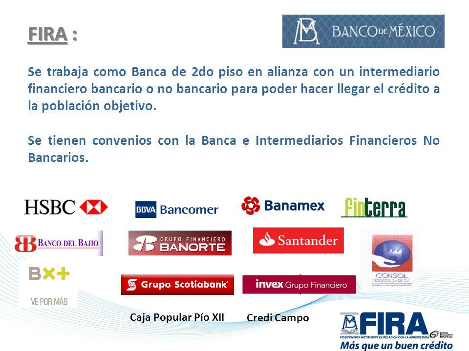 FIRA : Se trabaja como Banca de 2do piso en alianza con un intermediario financiero bancario o no bancario para poder hacer llegar el crédito a la pob
