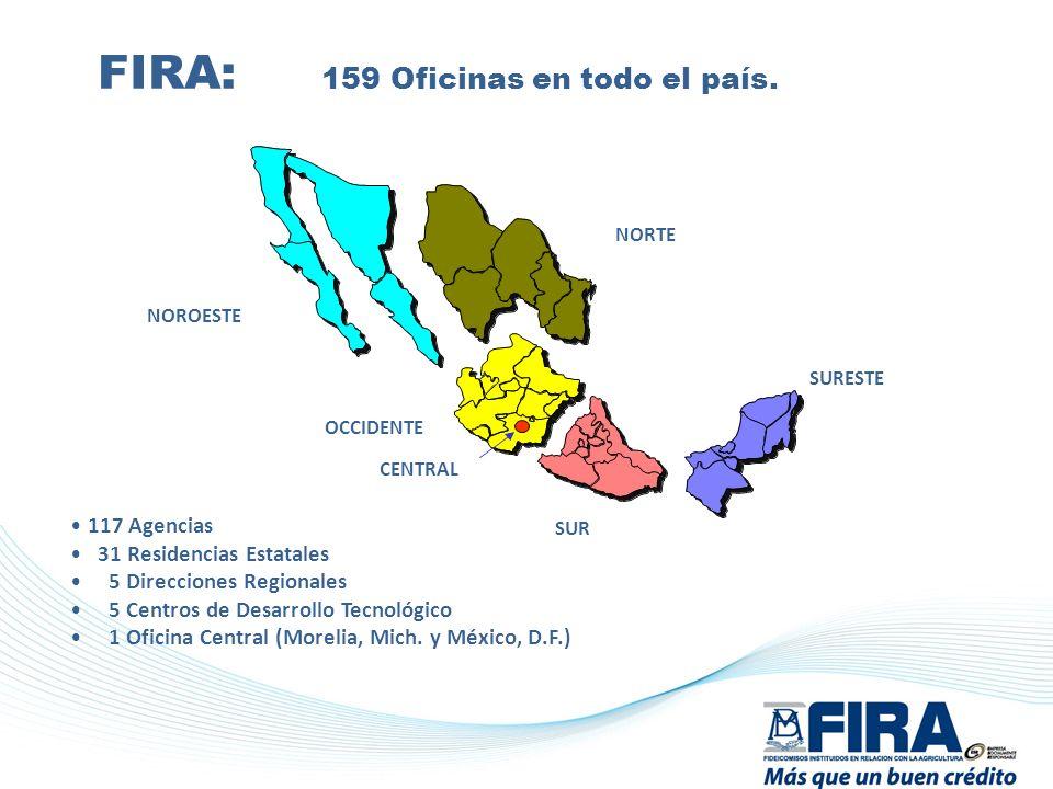 117 Agencias 31 Residencias Estatales 5 Direcciones Regionales 5 Centros de Desarrollo Tecnológico 1 Oficina Central (Morelia, Mich. y México, D.F.) F