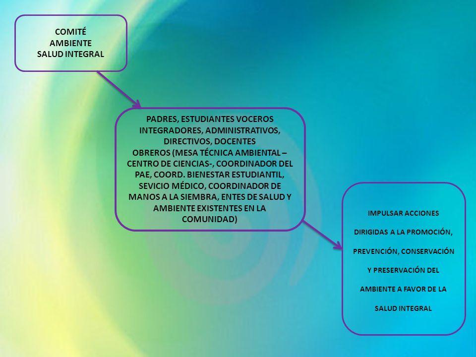COMITÉ AMBIENTE SALUD INTEGRAL PADRES, ESTUDIANTES VOCEROS INTEGRADORES, ADMINISTRATIVOS, DIRECTIVOS, DOCENTES OBREROS (MESA TÉCNICA AMBIENTAL – CENTR