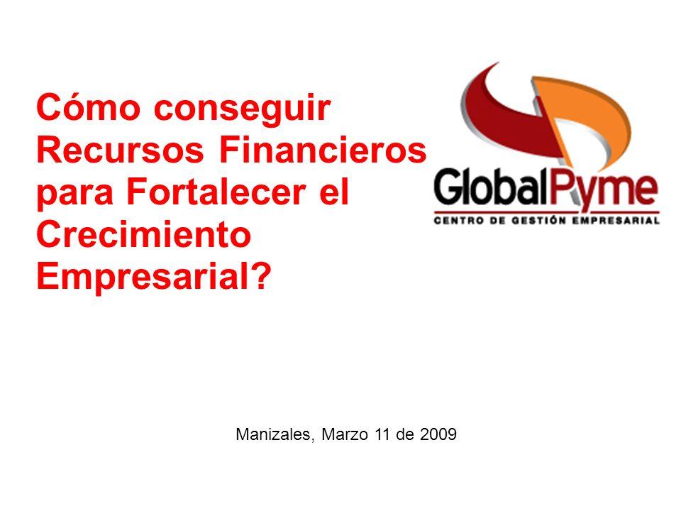 Cómo conseguir Recursos Financieros para Fortalecer el Crecimiento Empresarial? Manizales, Marzo 11 de 2009