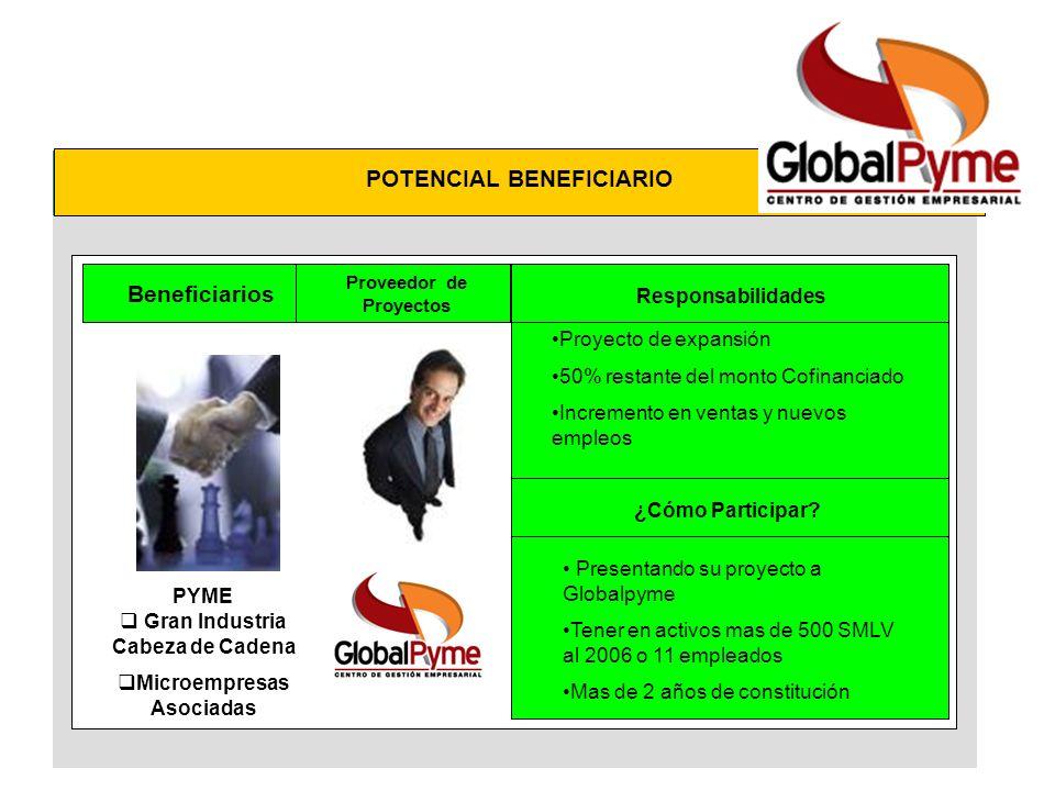 Beneficiarios Proveedor de Proyectos Evaluador e Interventor Proveedor de Servicios PYME Gran Industria Cabeza de Cadena Microempresas Asociadas POTEN
