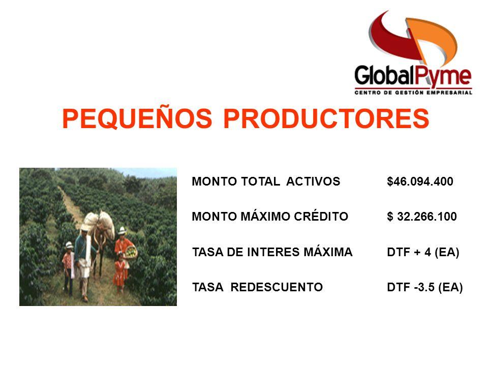 Pequeño Productor Mujer Rural Pequeño Productor alianza Otro Productor PEQUEÑOS PRODUCTORES MONTO TOTAL ACTIVOS$46.094.400 MONTO MÁXIMO CRÉDITO$ 32.26