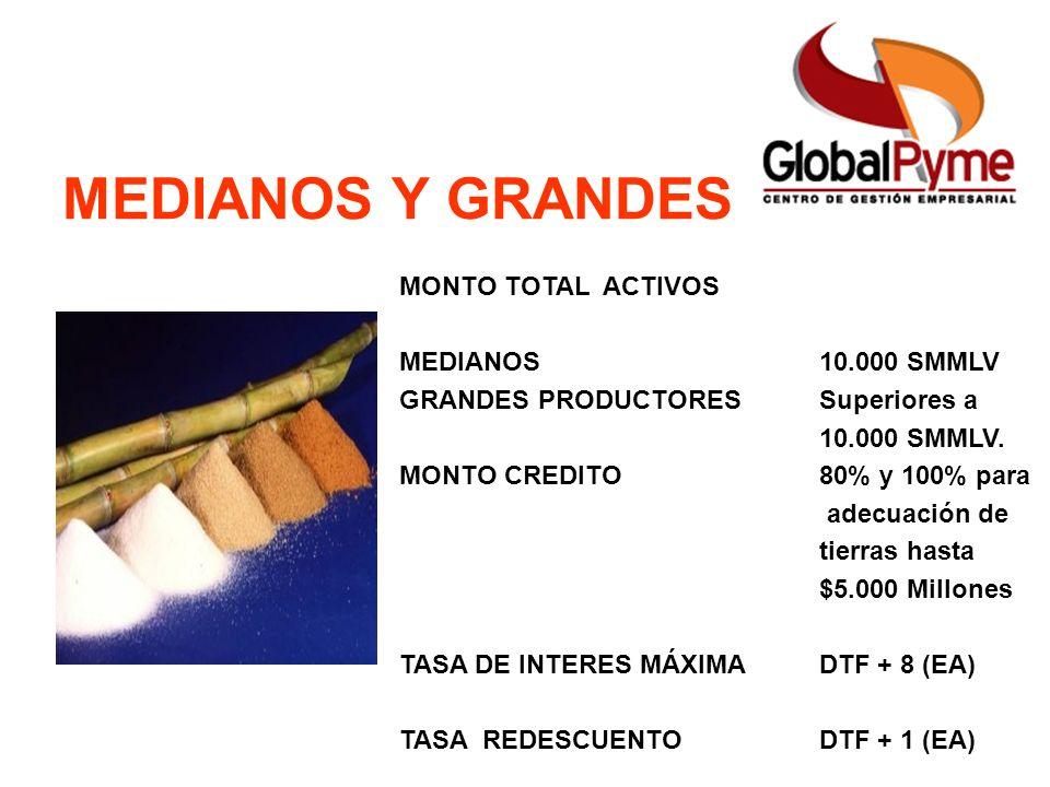 Pequeño Productor Mujer Rural Pequeño Productor alianza Otro Productor MEDIANOS Y GRANDES MONTO TOTAL ACTIVOS MEDIANOS10.000 SMMLV GRANDES PRODUCTORES