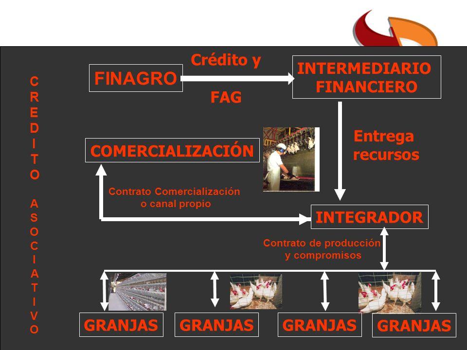 INTEGRADOR GRANJAS INTERMEDIARIO FINANCIERO FINAGRO Crédito y FAG Entrega recursos COMERCIALIZACIÓN Contrato Comercialización o canal propio Contrato