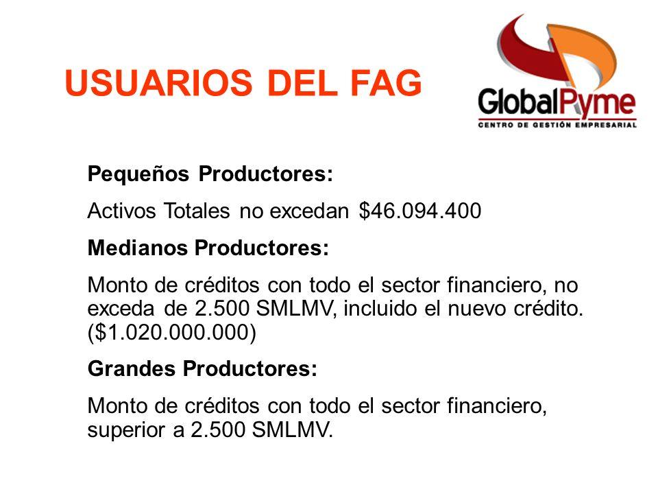Pequeño Productor Mujer Rural Pequeño Productor alianza Otro Productor FAG ICR Usuarios Cobertura y Monto de la Garantía USUARIOS DEL FAG Pequeños Pro