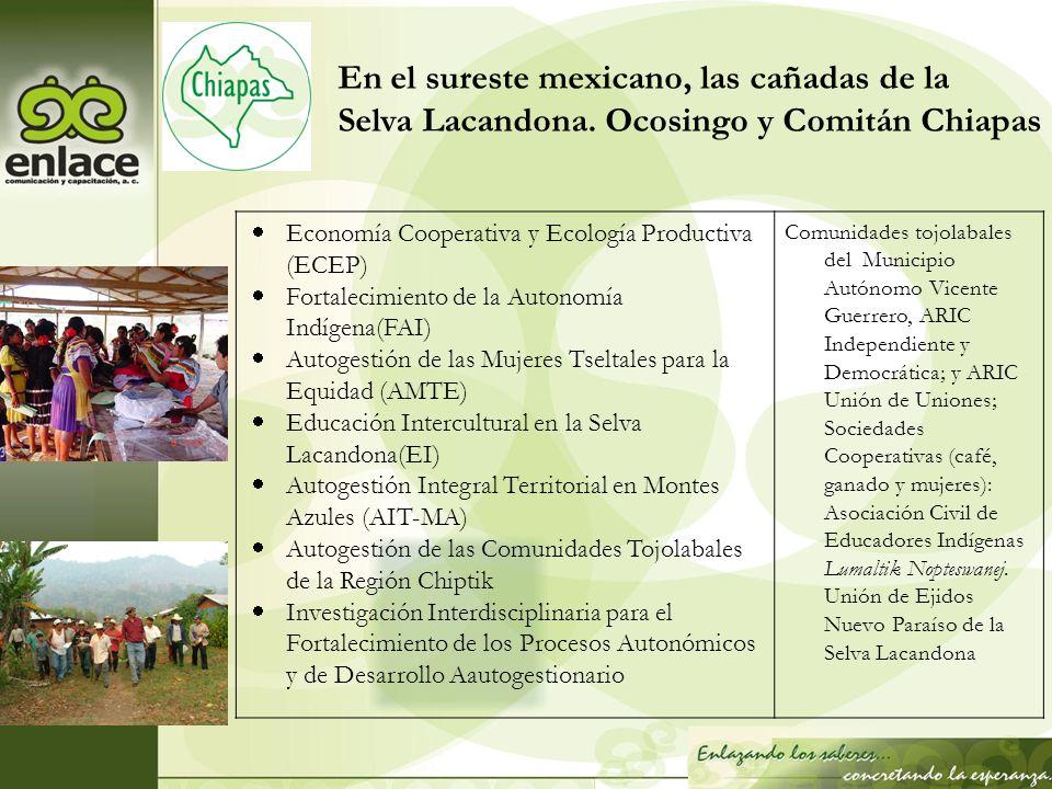Economía Cooperativa y Ecología Productiva (ECEP) Fortalecimiento de la Autonomía Indígena(FAI) Autogestión de las Mujeres Tseltales para la Equidad (