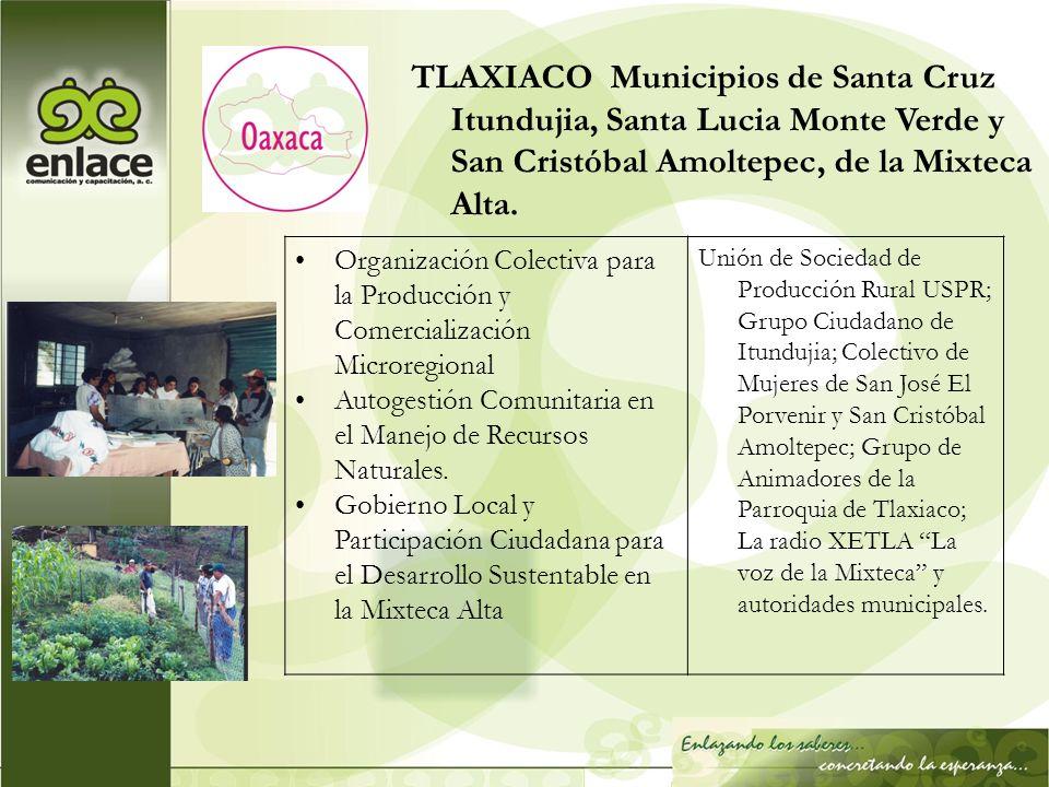 TLAXIACO Municipios de Santa Cruz Itundujia, Santa Lucia Monte Verde y San Cristóbal Amoltepec, de la Mixteca Alta. Organización Colectiva para la Pro