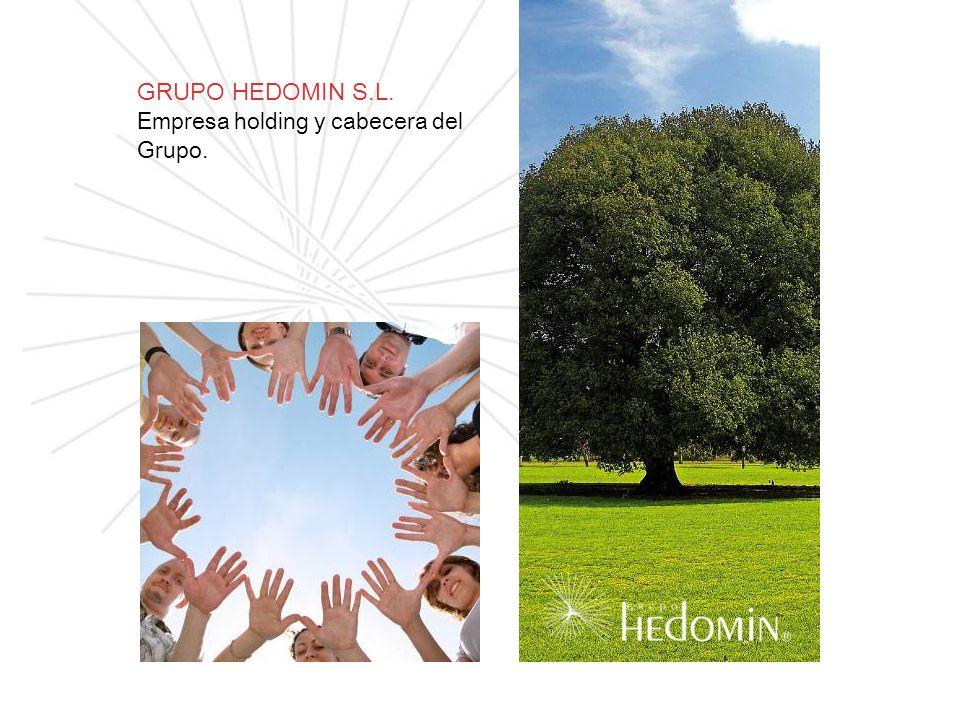 GRUPO HEDOMIN S.L. Empresa holding y cabecera del Grupo.