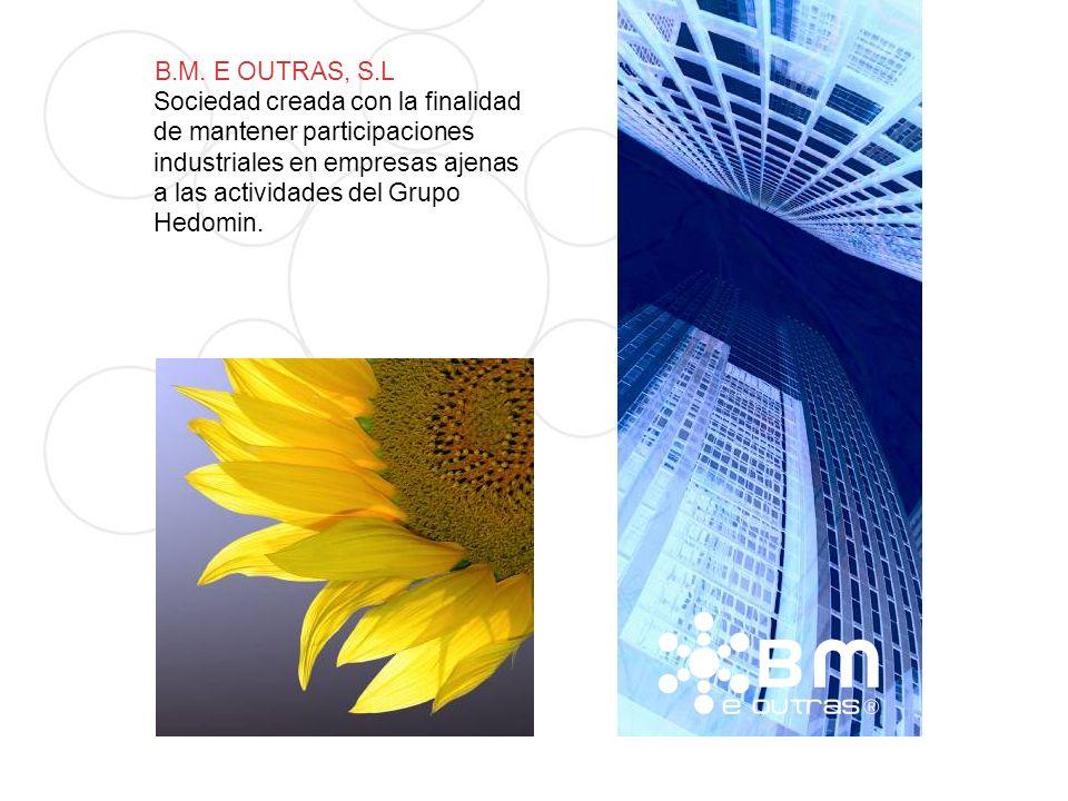 B.M. E OUTRAS, S.L Sociedad creada con la finalidad de mantener participaciones industriales en empresas ajenas a las actividades del Grupo Hedomin.