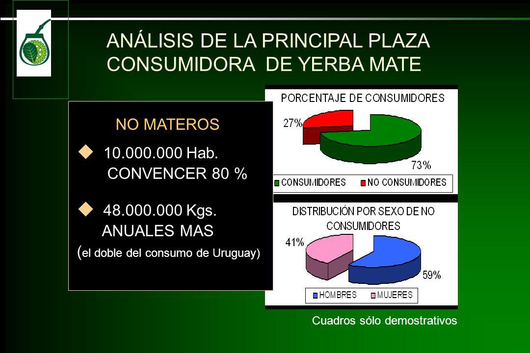 NO CONSUMIDORES: 42 % CONVIVE CON MATEROS 84 % VISITA SITIOS DONDE SE MATEA 15 % TRABAJAN DONDE SE MATEA NO MATEROS 10.000.000 Hab.
