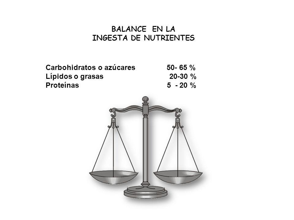 BALANCE EN LA INGESTA DE NUTRIENTES Carbohidratos o azúcares 50- 65 % Lípidos o grasas 20-30 % Proteínas 5 - 20 %