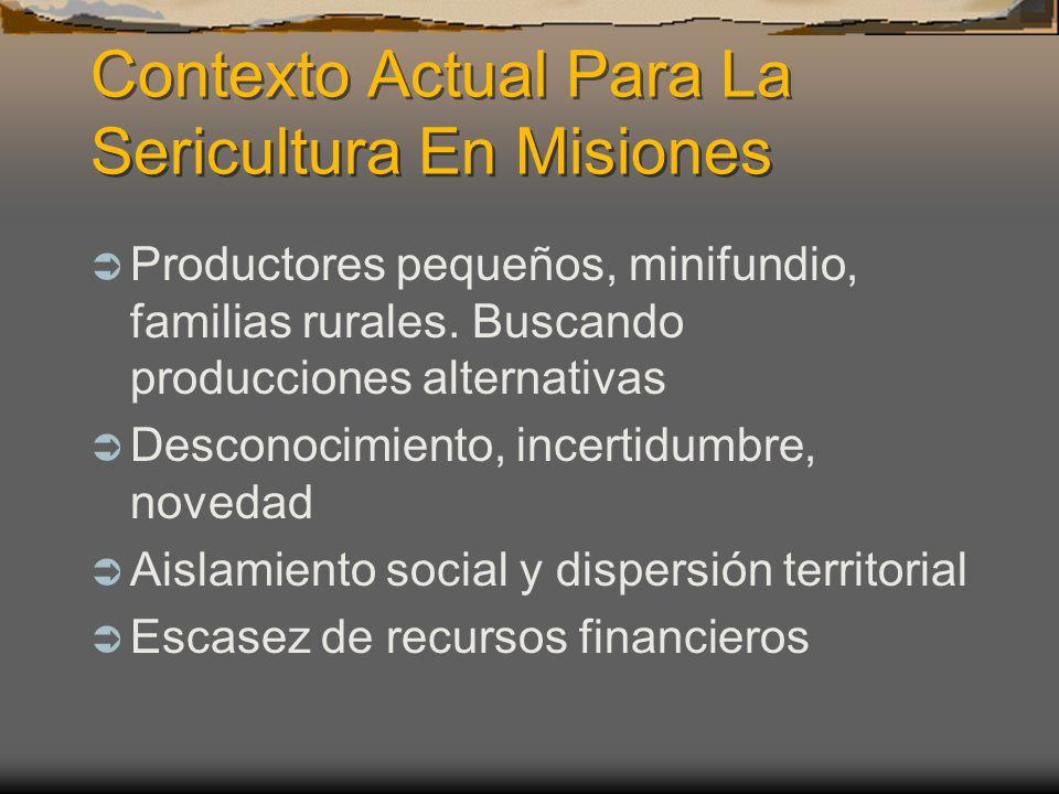 Contexto Actual Para La Sericultura En Misiones Productores pequeños, minifundio, familias rurales. Buscando producciones alternativas Desconocimiento