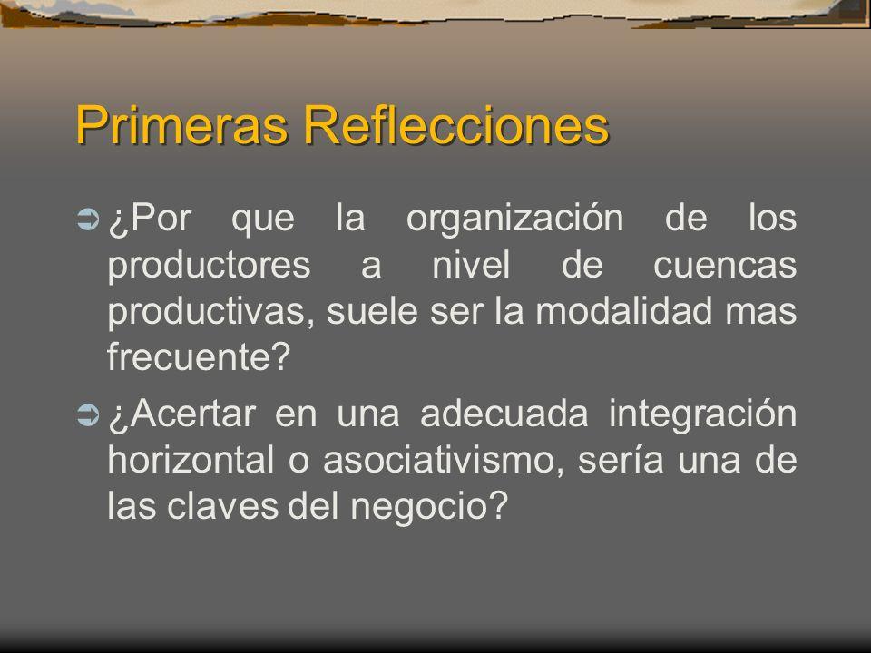 Primeras Reflecciones ¿Por que la organización de los productores a nivel de cuencas productivas, suele ser la modalidad mas frecuente? ¿Acertar en un
