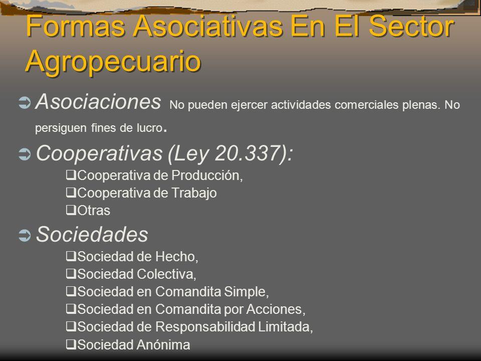 Formas Asociativas En El Sector Agropecuario Asociaciones No pueden ejercer actividades comerciales plenas. No persiguen fines de lucro. Cooperativas