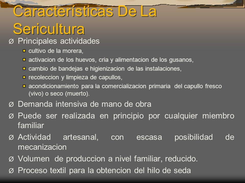 Características De La Sericultura Ø Principales actividades cultivo de la morera, activacion de los huevos, cria y alimentacion de los gusanos, cambio