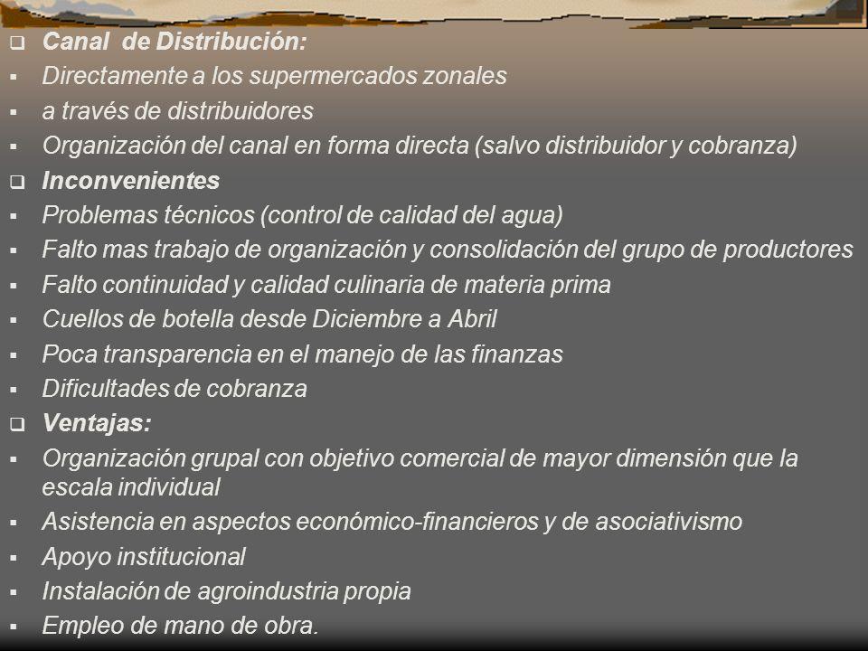 Canal de Distribución: Directamente a los supermercados zonales a través de distribuidores Organización del canal en forma directa (salvo distribuidor