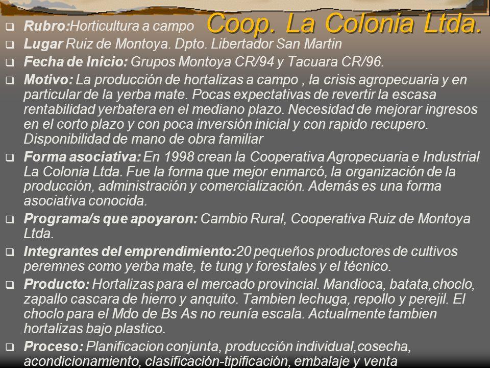 Coop. La Colonia Ltda. Rubro:Horticultura a campo Lugar Ruiz de Montoya. Dpto. Libertador San Martin Fecha de Inicio: Grupos Montoya CR/94 y Tacuara C