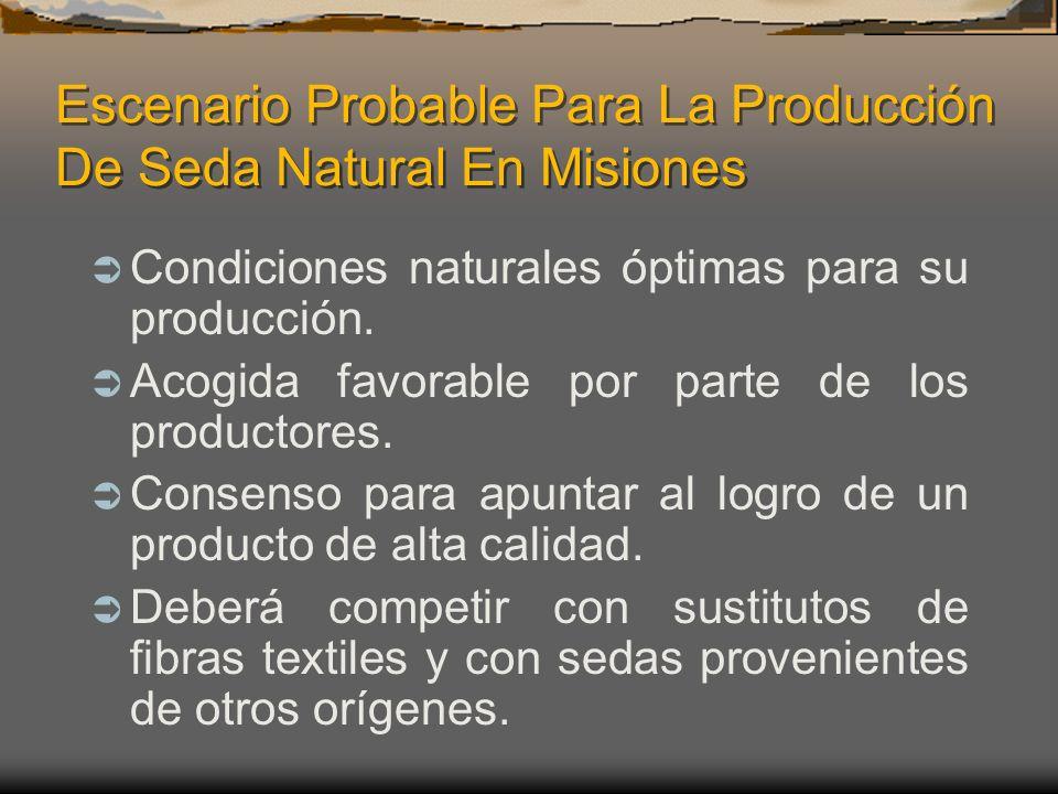 Escenario Probable Para La Producción De Seda Natural En Misiones Condiciones naturales óptimas para su producción. Acogida favorable por parte de los