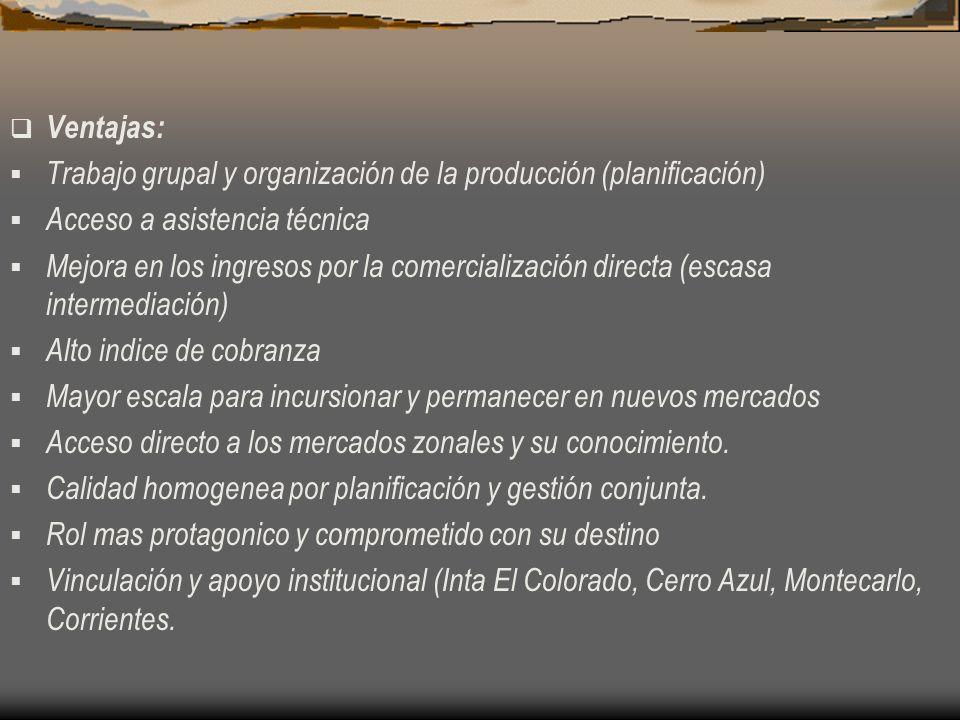 Ventajas: Trabajo grupal y organización de la producción (planificación) Acceso a asistencia técnica Mejora en los ingresos por la comercialización di