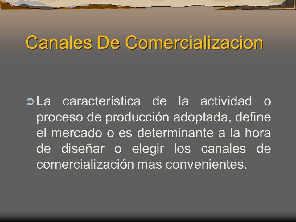 Canales De Comercializacion La característica de la actividad o proceso de producción adoptada, define el mercado o es determinante a la hora de diseñ