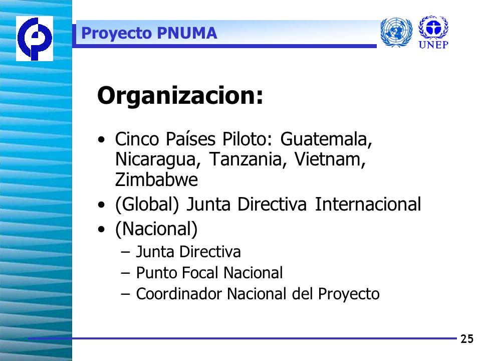 25 Organizacion: Cinco Países Piloto: Guatemala, Nicaragua, Tanzania, Vietnam, Zimbabwe (Global) Junta Directiva Internacional (Nacional) –Junta Directiva –Punto Focal Nacional –Coordinador Nacional del Proyecto Proyecto PNUMA