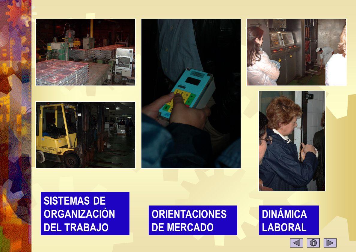Empresas 2 EMPRESAS VALLINA, S.A.. GRUPO ARGA IDESA, S.A.