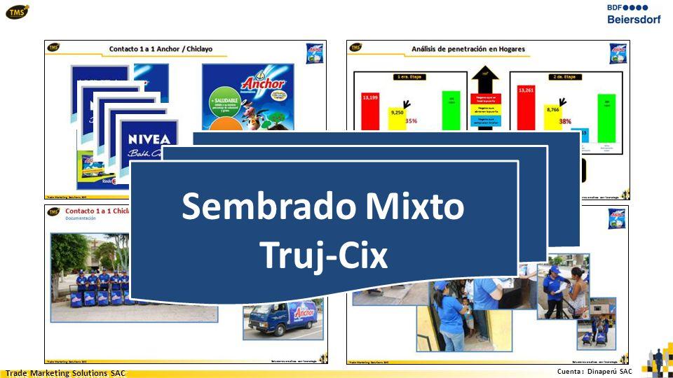 Cuenta : Dinaperú SAC Trade Marketing Solutions SAC Sembrado Mixto Truj-Cix