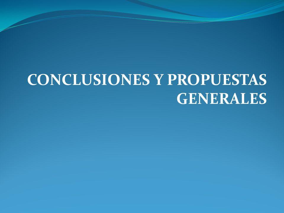 CONCLUSIONES Y PROPUESTAS GENERALES