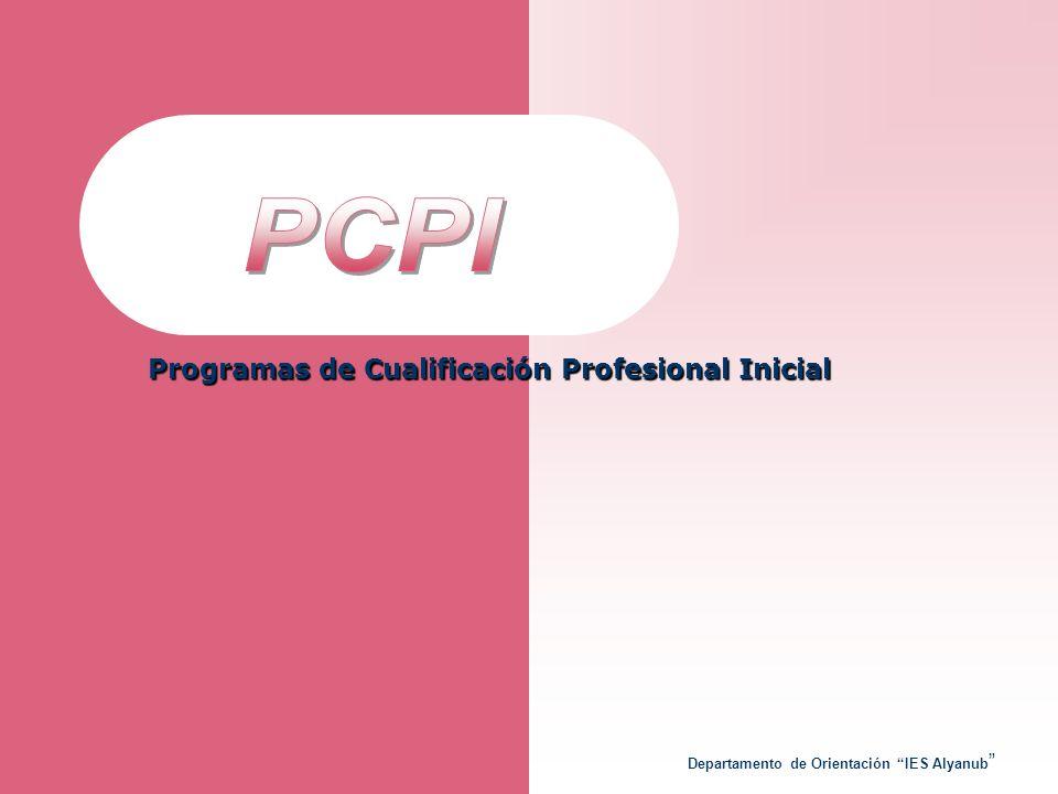 Departamento de Orientación IES Alyanub Programas de Cualificación Profesional Inicial