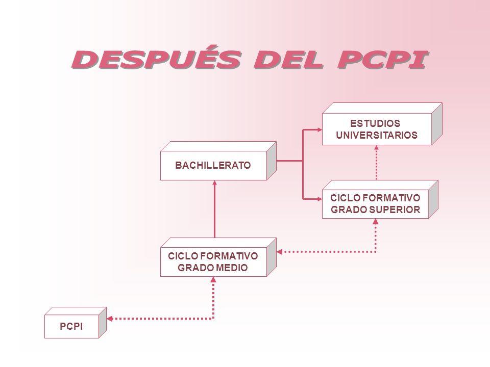BACHILLERATO CICLO FORMATIVO GRADO MEDIO ESTUDIOS UNIVERSITARIOS CICLO FORMATIVO GRADO SUPERIOR PCPI