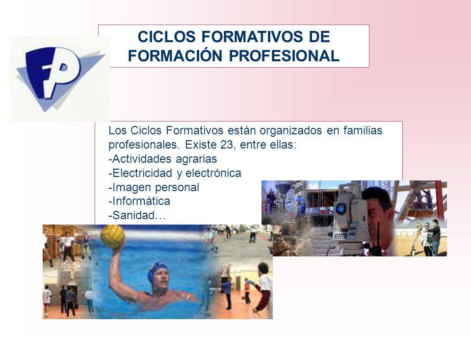 CICLOS FORMATIVOS DE FORMACIÓN PROFESIONAL Los Ciclos Formativos están organizados en familias profesionales. Existe 23, entre ellas: -Actividades agr