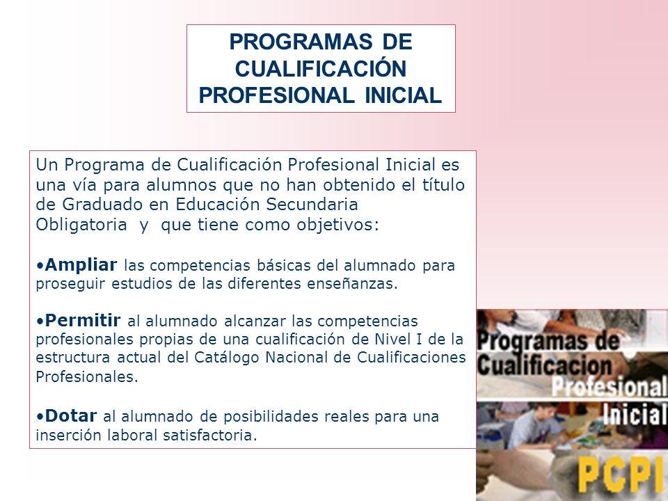 PROGRAMAS DE CUALIFICACIÓN PROFESIONAL INICIAL Un Programa de Cualificación Profesional Inicial es una vía para alumnos que no han obtenido el título