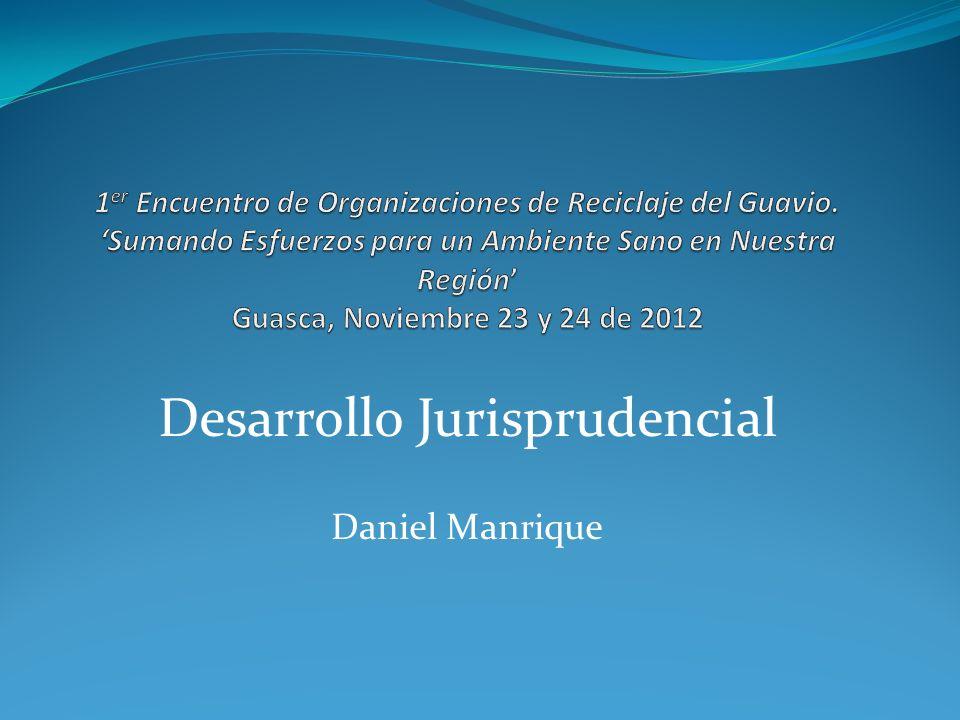 Desarrollo Jurisprudencial Daniel Manrique