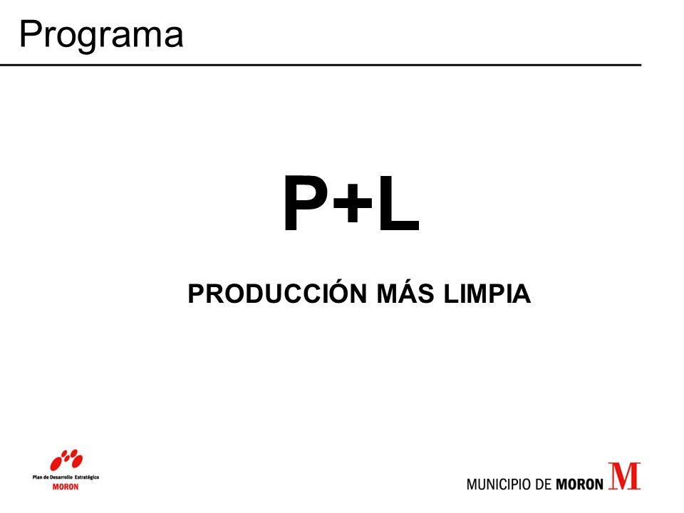 P+L PRODUCCIÓN MÁS LIMPIA Programa