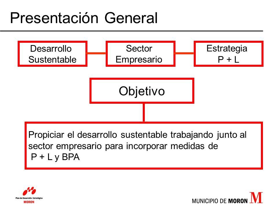 Presentación General Desarrollo Sustentable Sector Empresario Estrategia P + L Objetivo Propiciar el desarrollo sustentable trabajando junto al sector