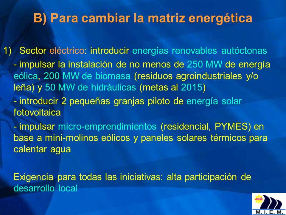 B) Para cambiar la matriz energética 1) Sector eléctrico: introducir energías renovables autóctonas - impulsar la instalación de no menos de 250 MW de